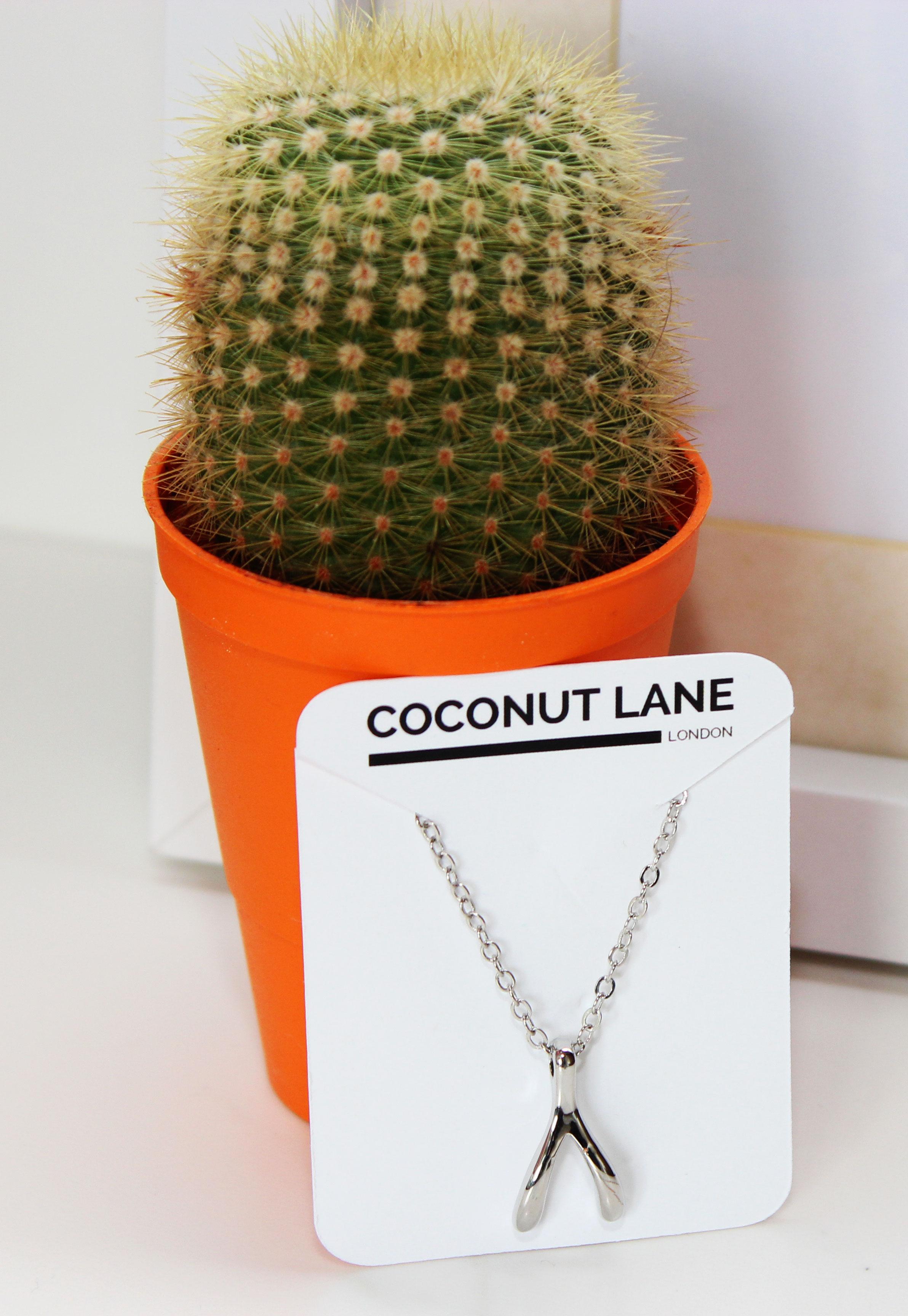 Wishbone-necklace.jpg