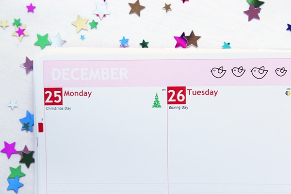 Personal planner Christmas Icon